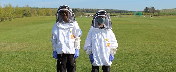 Bee keeping at Dauntsey's | Dickinson School Consulting